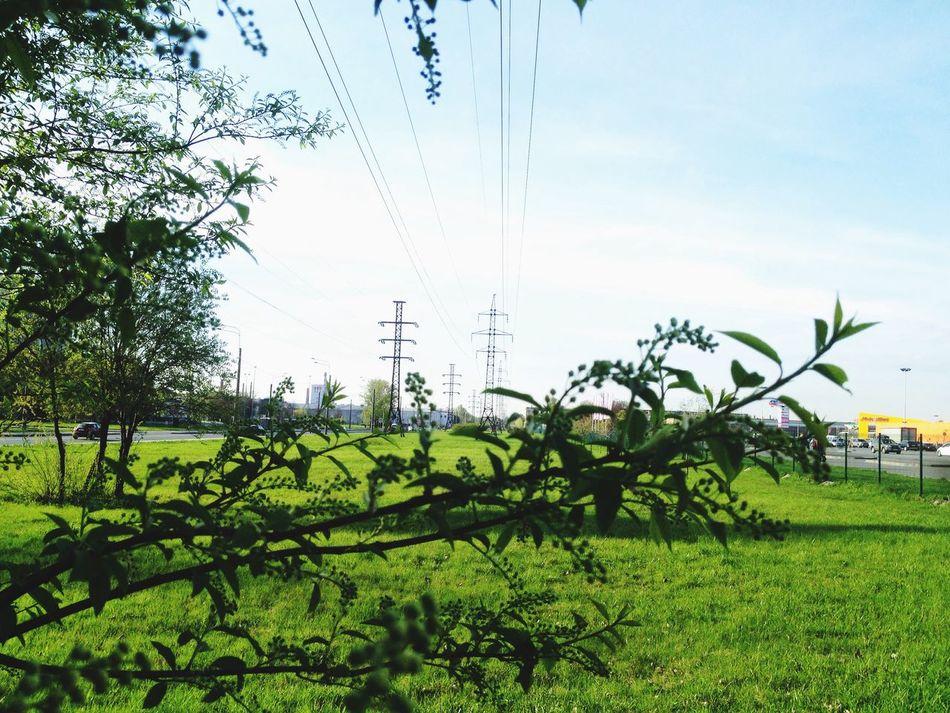 Линииэлектропередач