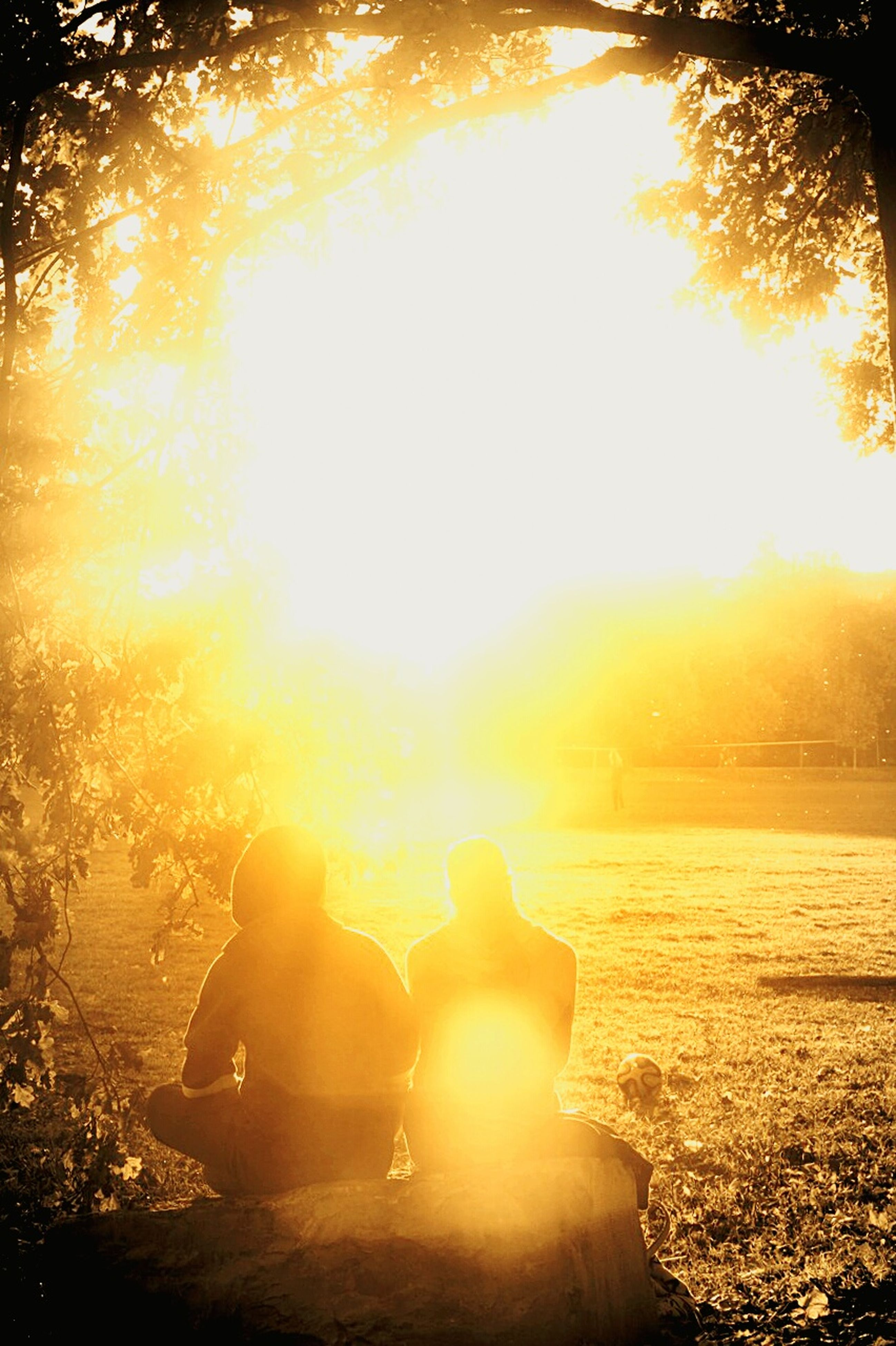 sun, lifestyles, sunbeam, sunset, leisure activity, lens flare, sunlight, water, togetherness, tree, men, person, orange color, reflection, bright, back lit, rear view