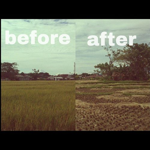 Before n after Before After Beforenafter