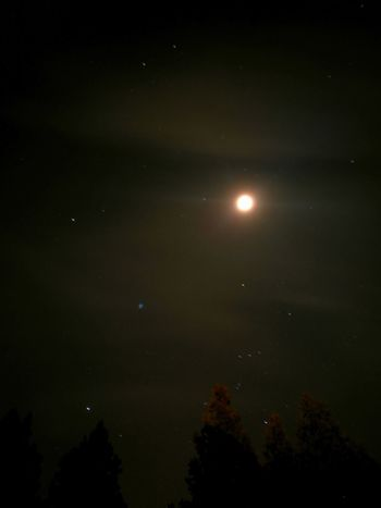 Leica Sky Moon Night Star - Space Astronomy Nature Space And Astronomy Space Cellphone Photography Orion