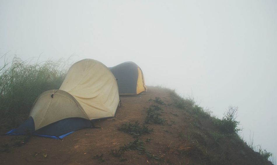 Beautiful stock photos of camping, Absence, Camping, Day, Fog