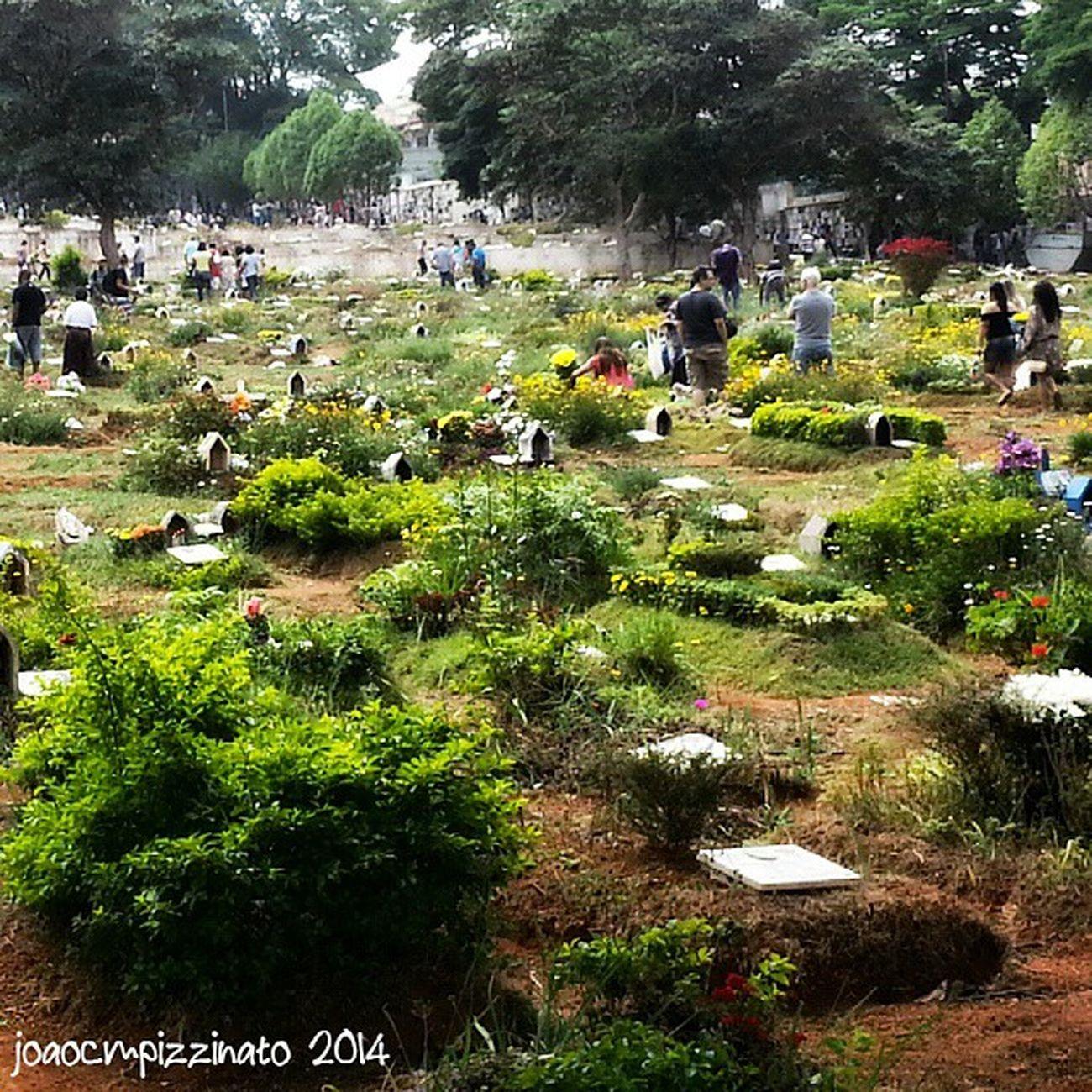 Dia de Finados. All Souls' day. Cemetery Art Peace Finados allsoulsday urban colors city zonasul saopaulo brasil photography