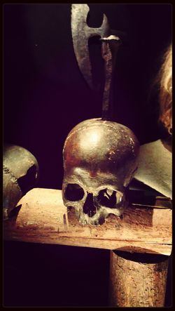 Check This Out Skull Amazing View Visiting Museum