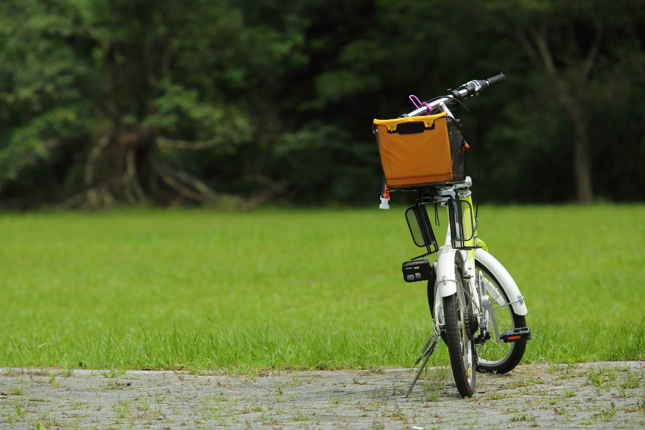 Beautiful stock photos of envelope,  Absence,  Basket,  Beauty In Nature,  Bicycle
