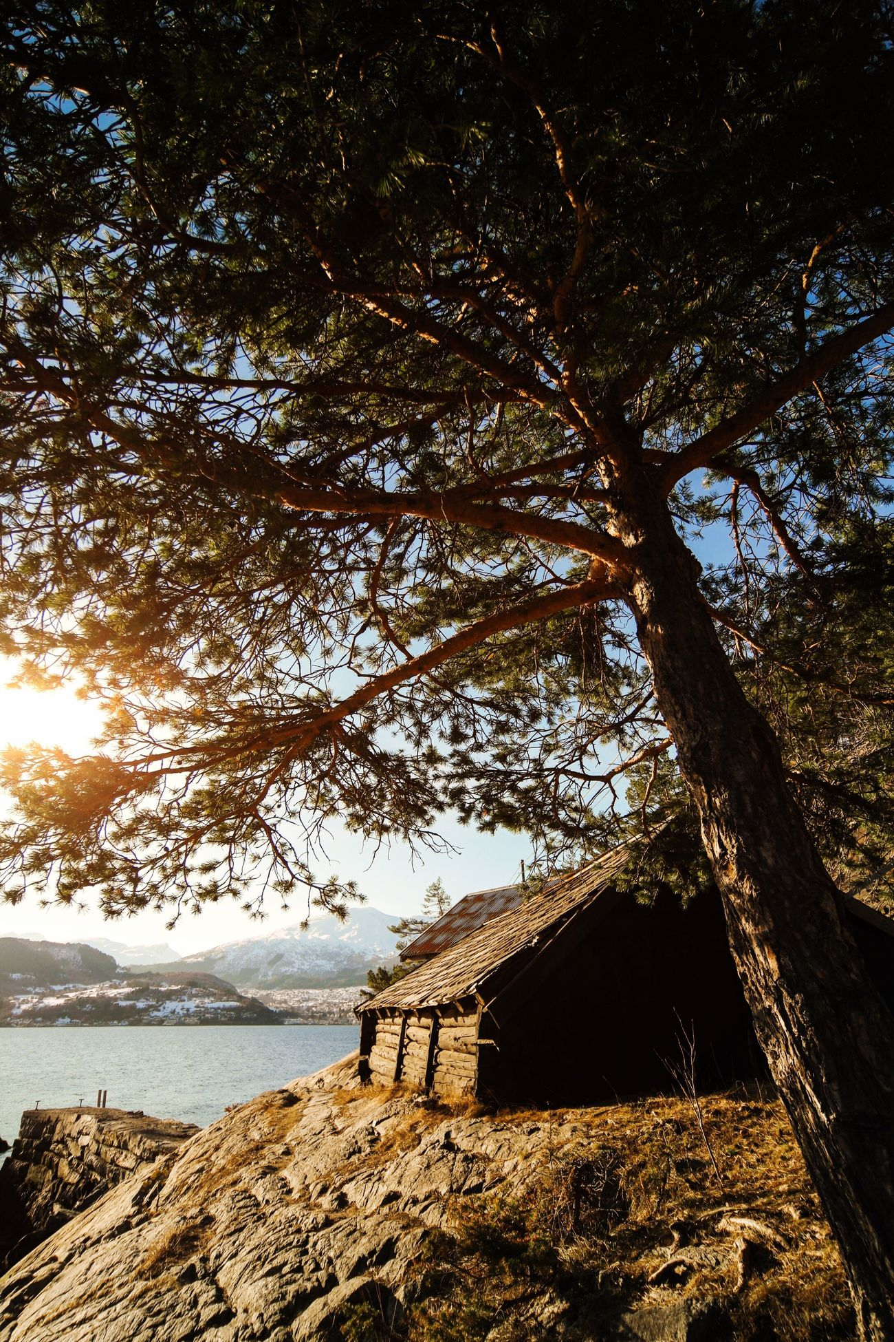 Summer Landscape Summertime Travel Feel 43 Golden Moments Adventure Summer Views Sunset Mountains Cottage Norway Tree Trees Lake Lake View Lakeshore