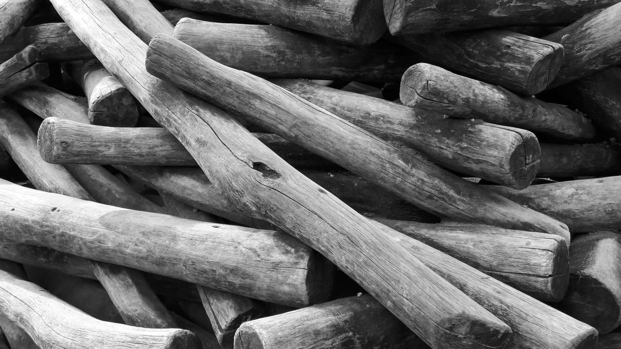 not my day, in the mood for this ;-) A Glorious Mess Large Group Of Objects Wood Trunks Tree Trunks No People Close-up Outdoors Chaos Pattern Wood Bnw
