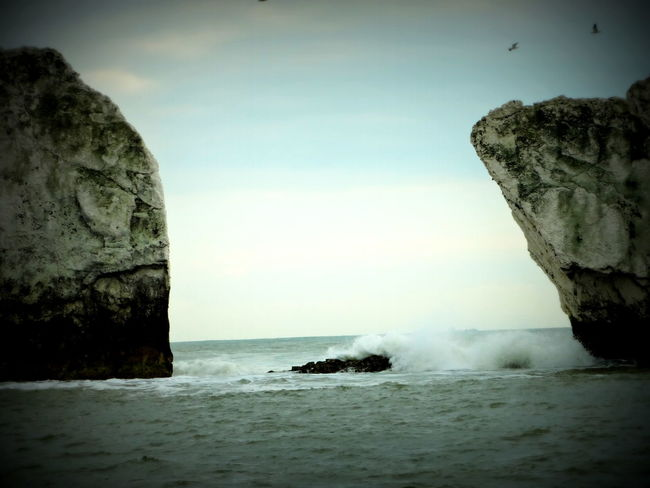 Isle Of Wight, UK Rocks And Water Waves Birds