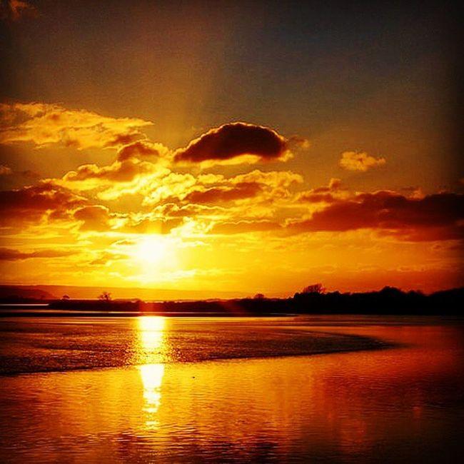 """Golden Taw"" Sunset Gold River Skyscene Riverscene Cloudporn Winterscene Wintersun Braunton Devon Sky Sun Sunshine Goldenhour"
