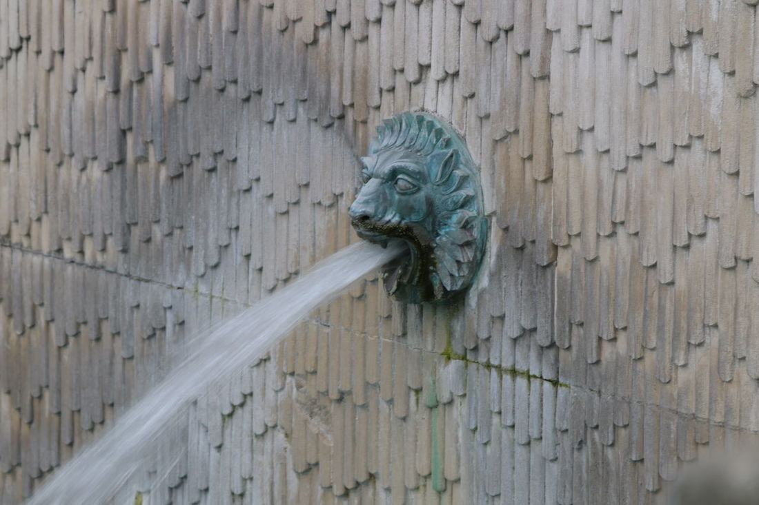 Architecture Lion Lion Head Wall Fountain No People Old St Paul's Cathedral Wall Water Spout