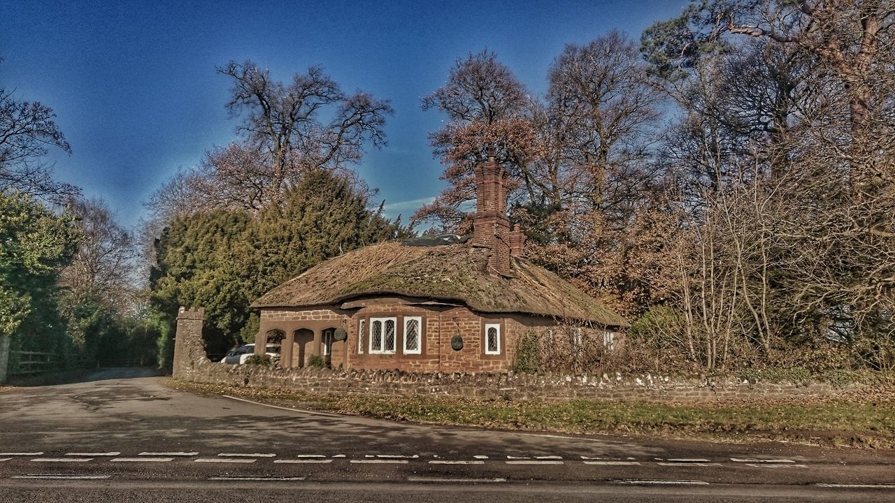 Built Structure Sky Building Exterior Nature Tree Porn Small Old But Awesome Old Buildings Sandstone Last Leaves To Fall From This Tree🍂🍂 Roof Line Treetastic From The Other Side Old Architecture Old-fashioned