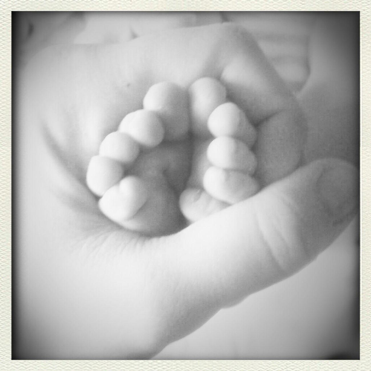 Newborn TheMinimals (less Edit Juxt Photography) Toes Blackandwhite