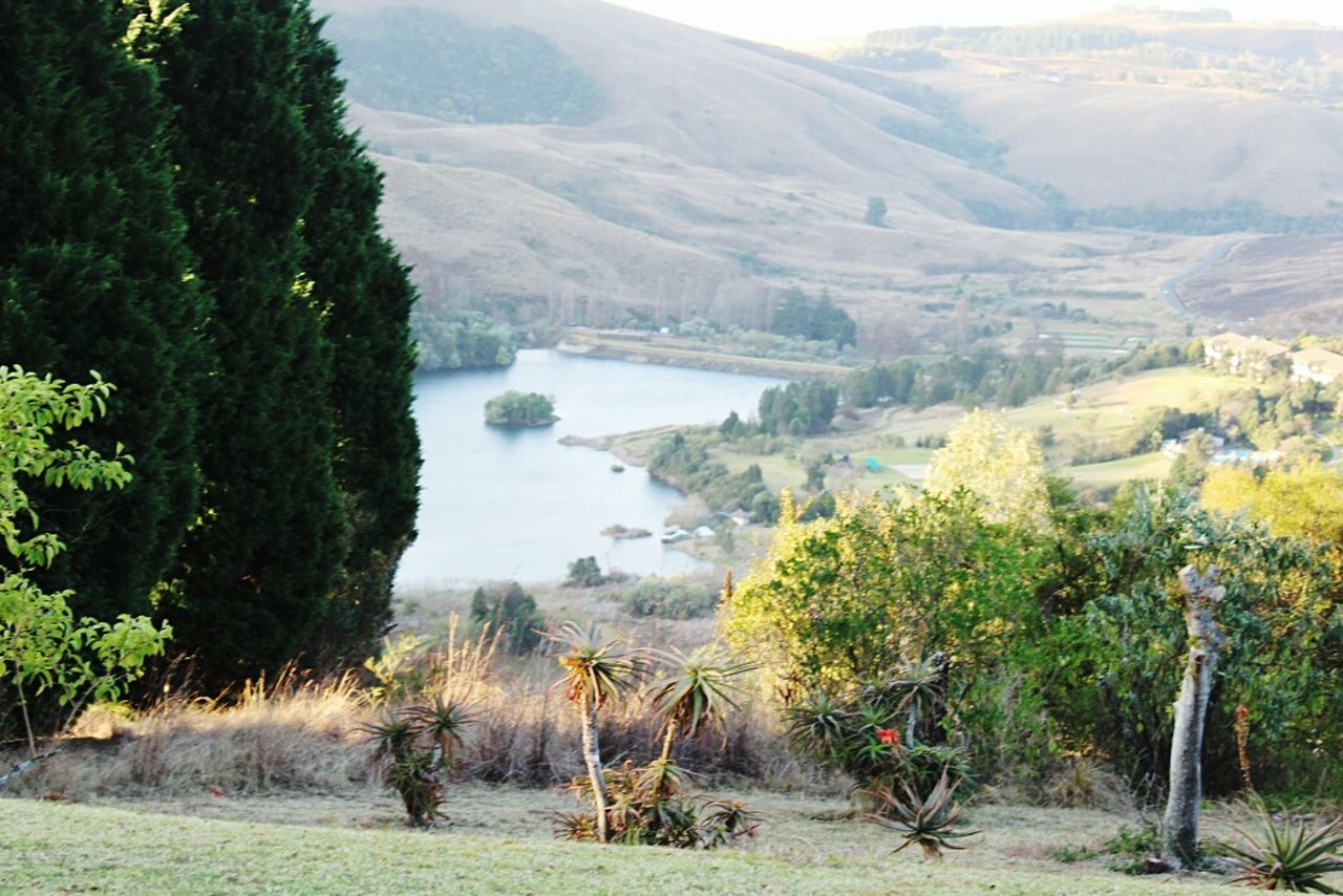 Bergview Estate Drakensberg, South Africa Drakensberg Sun Photography Green Grass And Trees Beauty In Nature Tranquility Travel Destinations Outdoors Mountain Scenics Landscape