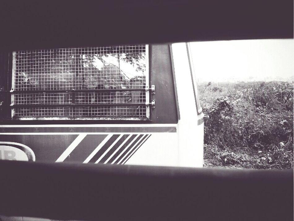 Taking Photos IPhone Photography Blac&white