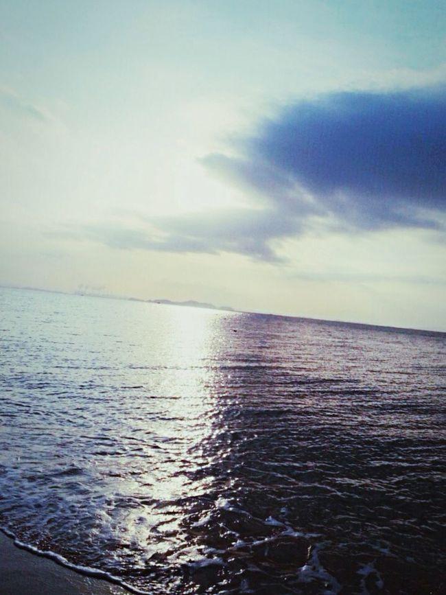 Sea Friends ㅊ억 First Eyeem Photo