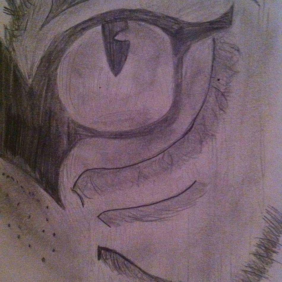 Art Tigerseye Love Sketch cool passion