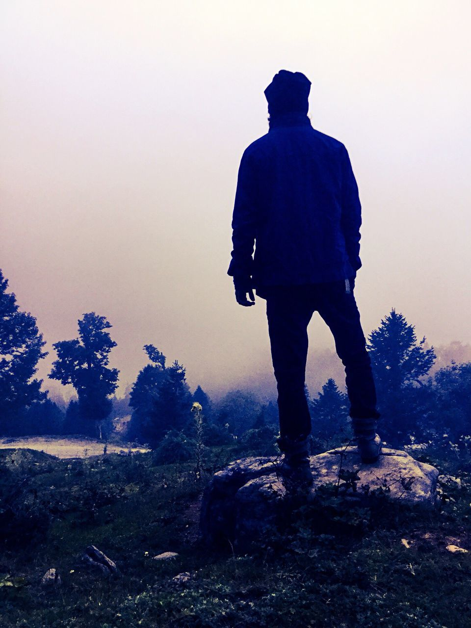 Rear View Of Man On Landscape Against Clear Sky During Foggy Weather