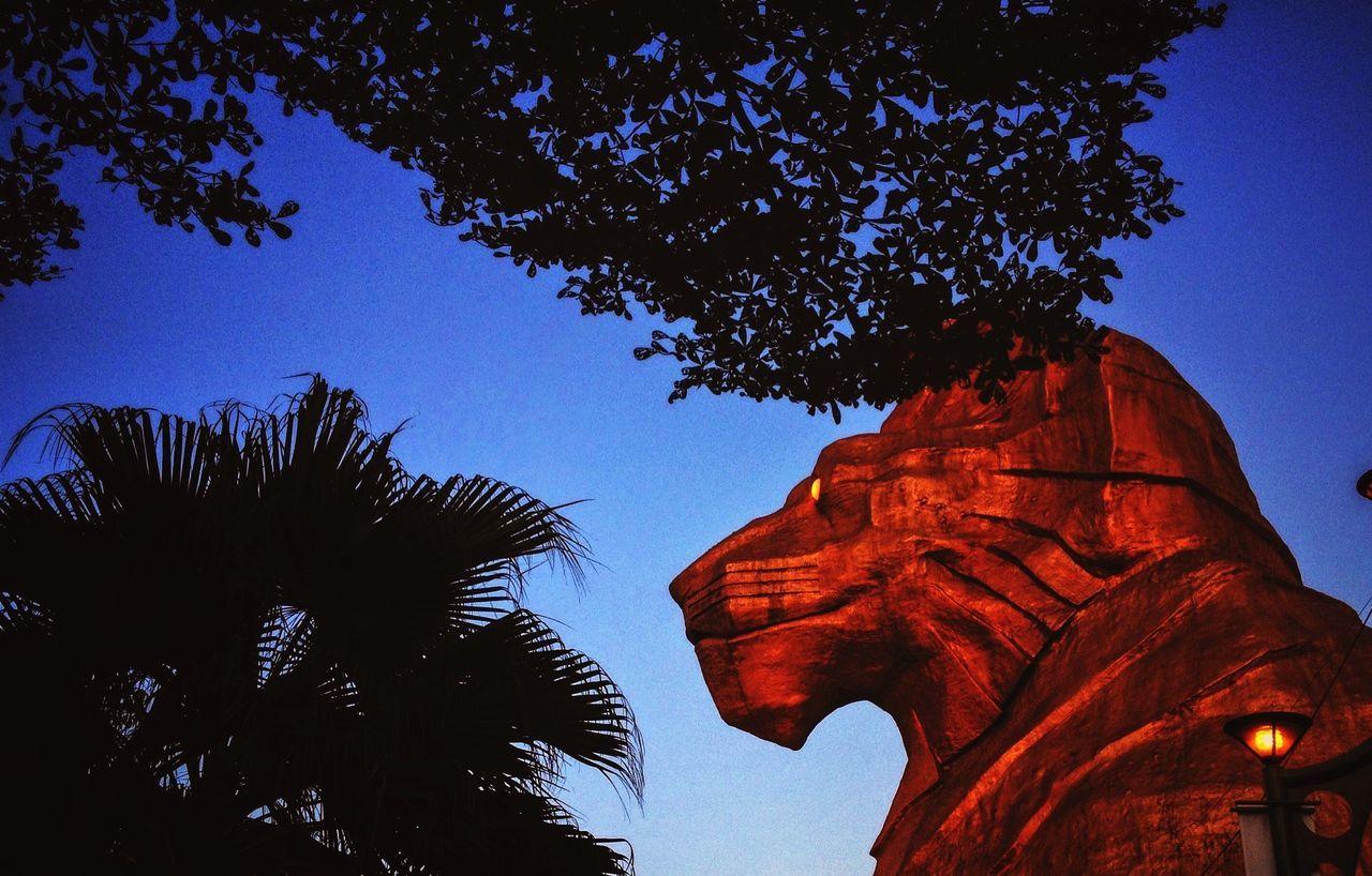 Colour Of Life Sunway Pyramid. Photo by Samsul Said Still Life Sunwaypyramid Malaysia Asiapictures