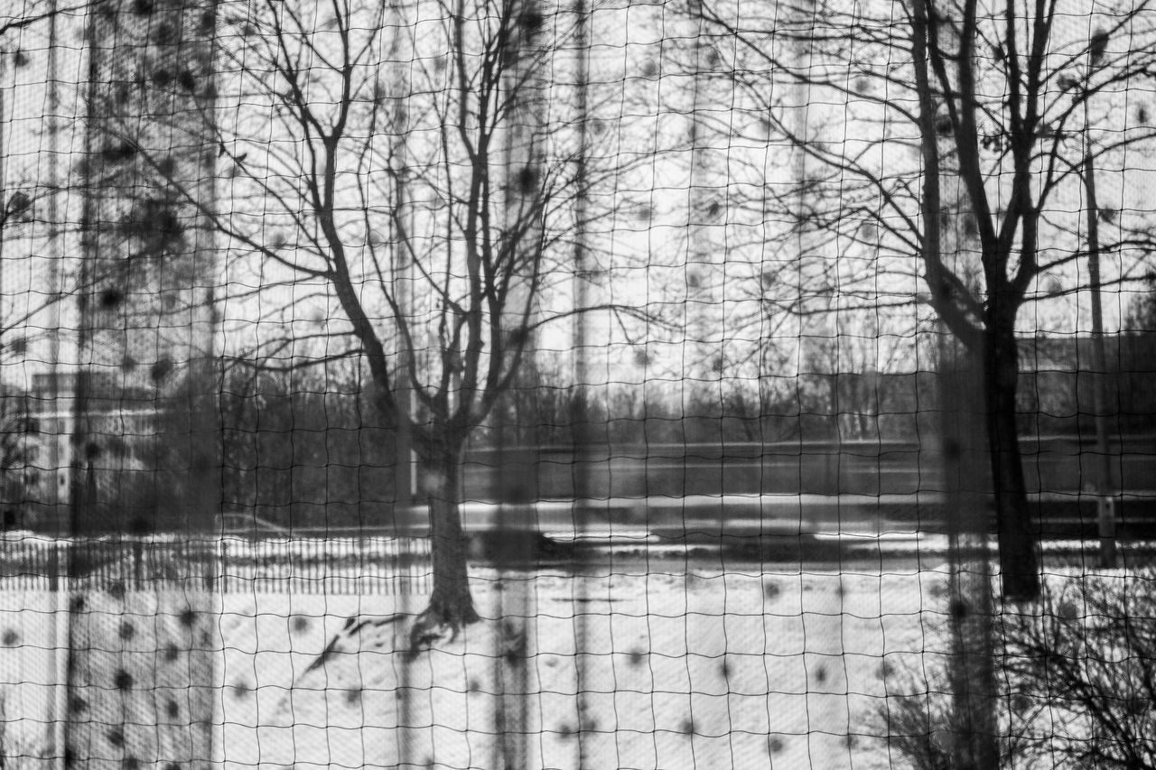 City smallpox Architecture Bare Tree Beauty In Nature Behind The Window Black And White Black And White Collection  Black And White Photography City Day Move Movement Photography Nature Net Curtain Net Curtains No People Outdoors Snow Spots Street Tram Tranquility Transportation Tree Winter Winter