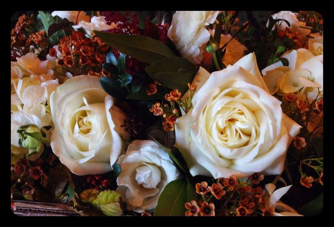 Arrangement Flowers White Color Roses Roses🌹 Rose - Flower Neutral Tones Orange Color Tiny Flowers Hydrangea Ranunculus