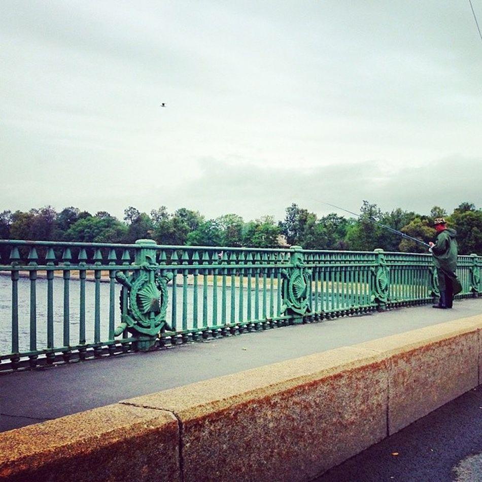 мост Питер рыбак рыбалкавгороде