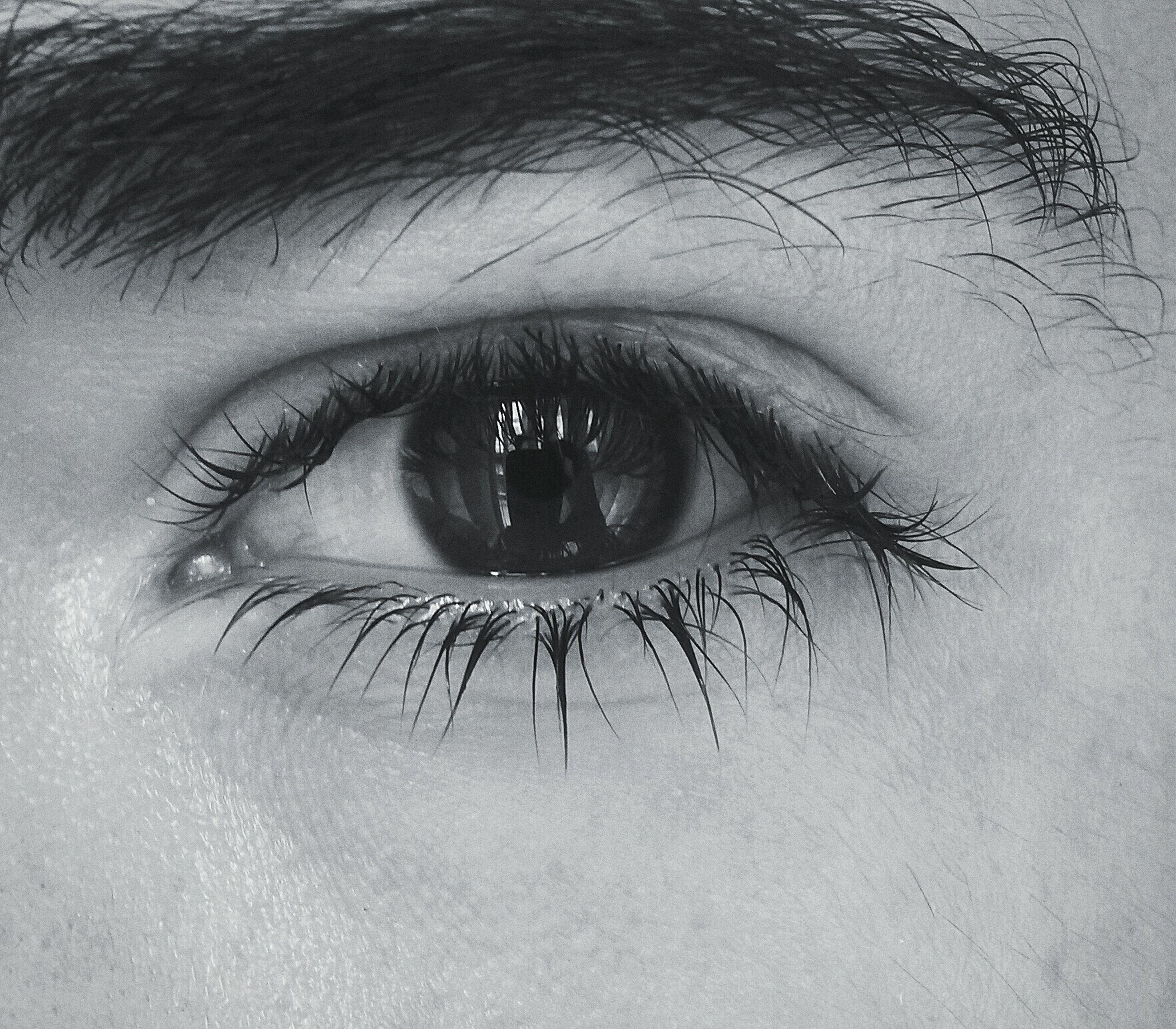 human eye, eyelash, close-up, looking at camera, eyesight, portrait, sensory perception, part of, extreme close-up, lifestyles, human skin, eyeball, human face, indoors, iris - eye, person, extreme close up