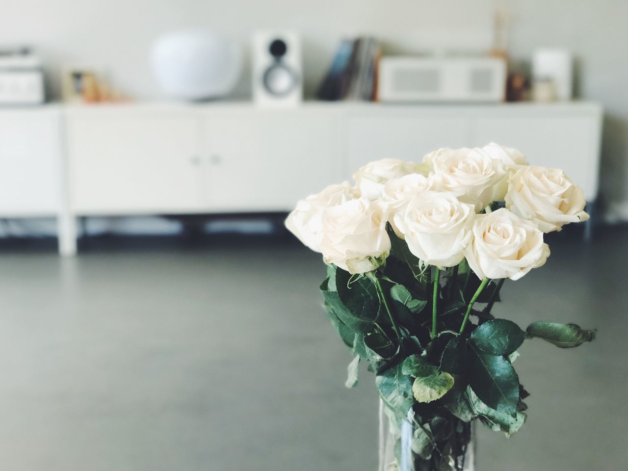 Flower Rose - Flower Focus On Foreground Indoors  White Color No People Vase Close-up Flower Head Fragility Petal Freshness Nature Table Leaf Plant Bouquet Beauty In Nature Day