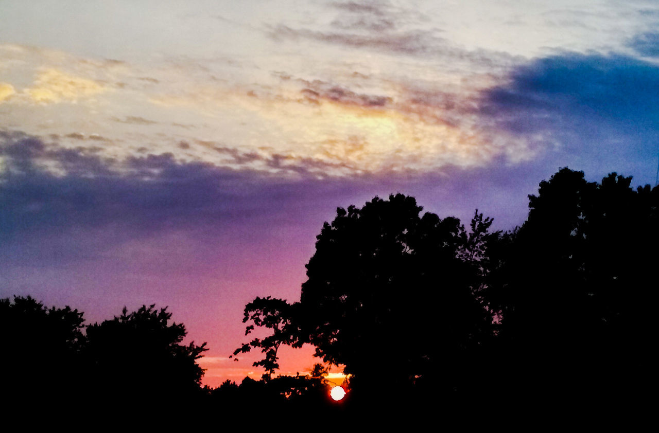 silhouette, sunset, tree, sky, beauty in nature, nature, scenics, no people, tranquility, tranquil scene, cloud - sky, low angle view, outdoors