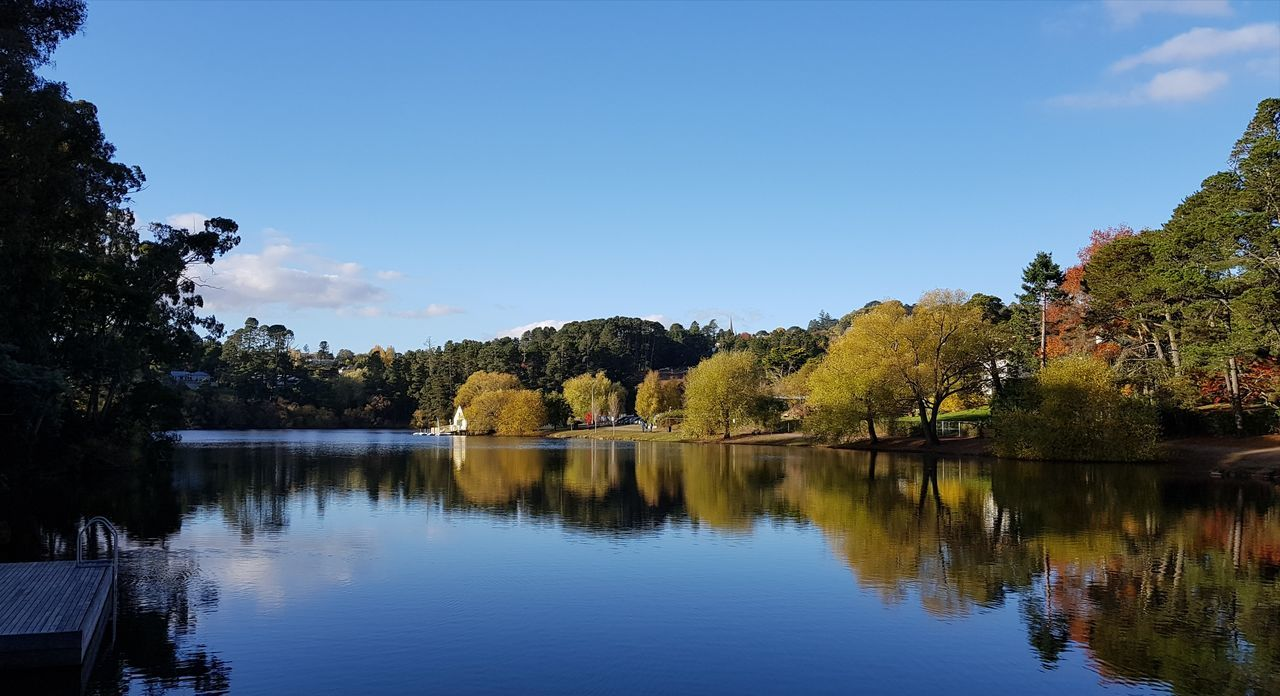 Reflection Tree Water Lake Scenics Blue Beauty In Nature Outdoors Sky Tranquility Autumn Nature Symmetry No People Day
