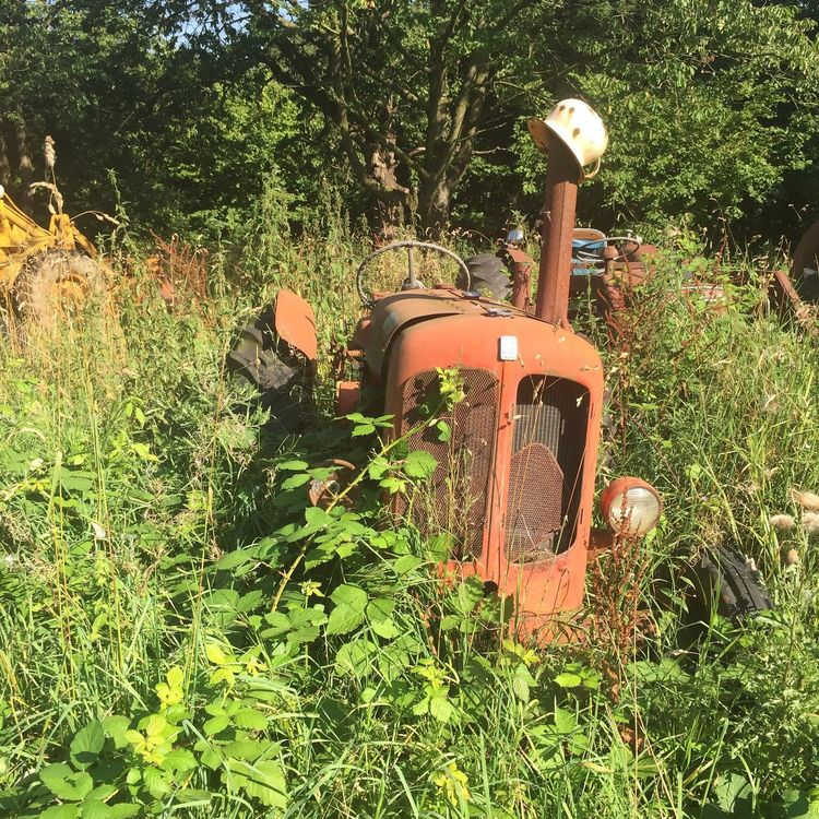 Abandoned Rusty Land Vehicle Tractor Summer No People Nature Grass Old-fashioned Agricultural Equipment